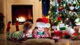 Цікаві новорічні факти, які здивують вашої дитини