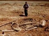 Скелет гігантського людини, виявлений в Монголії, приголомшив і посварив вчених