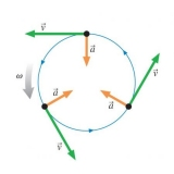 Формули прискорення у фізиці: лінійне і центростремительное прискорення